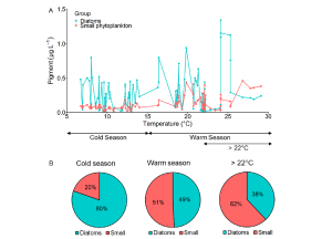 Temperature-Dependent Bifurcated Seasonal Shift of Phytoplankton Community Composition in the Coastal Water off Southwestern Korea 이미지
